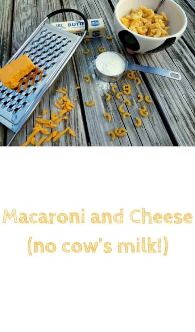 Macaroni and cheese (no cow's milk!) in a cow themed bowl on a picnic table. Adjacent to the bowl is a grater with a block of sharp cheddar on top, a measuring cup with flour, and a stick of butter. Sprinkled in the foreground is grated sharp cheddar cheese and uncooked macaroni. This is the designated pinterest pin.