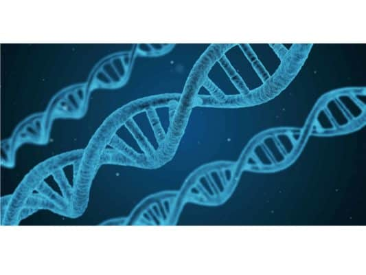 Genetic Testing for Psychiatric Medications