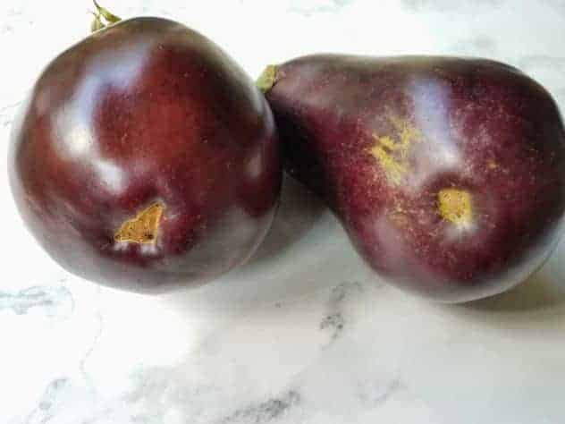Two eggplants sit on a white marble background. The eggplant on the left is an example of a female eggplant, which has a slot on the bottom. The eggplant on the right is an example of a male eggplant, which has a circular dimple on the bottom.