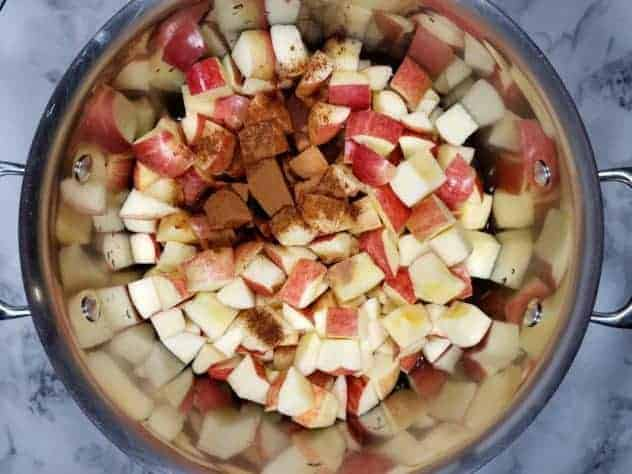 Apple chunks, water, and spices sit in a large stainless steel pot.