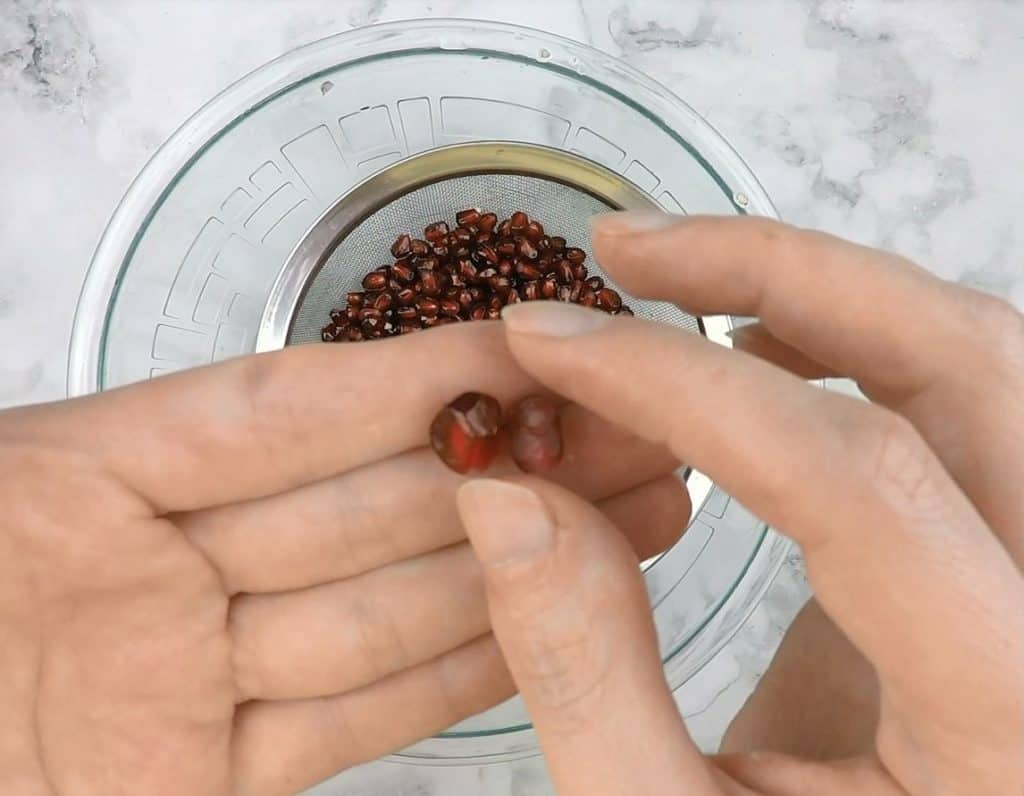 A close-up of two seeds. On the right-hand side is a good seed, which is a vibrant red and firm to the touch. On the right is a bad seed which is brown in color and soft and mushy to the touch.